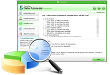 Partition Recovery