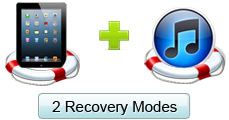 Recover Lost iPad Data